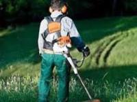 Fizyczna praca Norwegia w ogrodnictwie bez języka od zaraz Bergen
