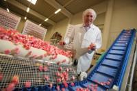 Od zaraz praca w Norwegii bez języka dla par produkcja słodyczy Stavanger