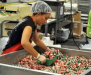 Praca Norwegia bez znajomości języka produkcja słodyczy dla par 2018 Stavanger