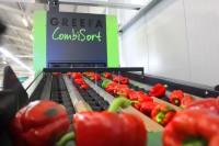 Oferta pracy w Norwegii bez znajomości języka pakowanie owoców od zaraz Moss