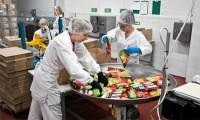 Od zaraz Norwegia praca pakowanie żywności bez znajomości języka Stavanger