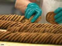 Od zaraz dam pracę w Norwegii dla par pakowanie ciastek bez języka Fredrikstad