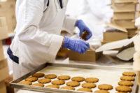 Ogłoszenie pracy w Norwegii od zaraz bez języka pakowanie ciastek Fredrikstad