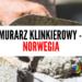MURARZ KLINKIEROWY - NORWEGIA