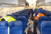 Bez znajomości języka praca w Norwegii przy sprzątaniu samolotów od zaraz Oslo