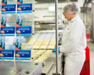 Dla par oferta pracy w Norwegii bez języka przy pakowaniu sera od zaraz Stavanger
