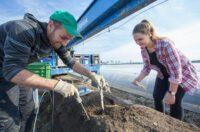 Bez języka sezonowa praca Norwegia przy zbiorach szparagów 2021 w Hoppestad