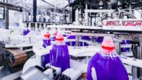 Dla par Norwegia praca bez znajomości języka produkcja detergentów od zaraz we Fredrikstad
